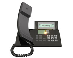 Get T1 CAS or T1 PRI telephone trunk service for your PBX system...